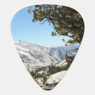 Vieil arbre au parc national de Yosemite Onglet De Guitare