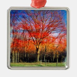 Vieil arbre sage ornement carré argenté