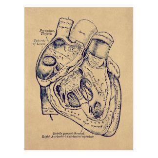 Vieil effet de papier de coeur vintage humain carte postale