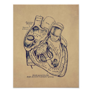 Vieil effet de papier de coeur vintage humain posters
