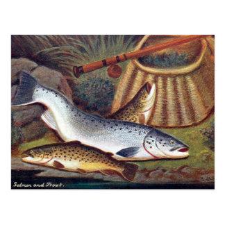 Vieille carte postale - saumon et truite