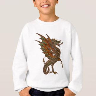 Vieille conception médiévale de dragon du YE Sweatshirt