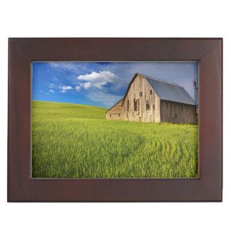 Vieille grange dans le domaine du blé de mars boîte à souvenirs