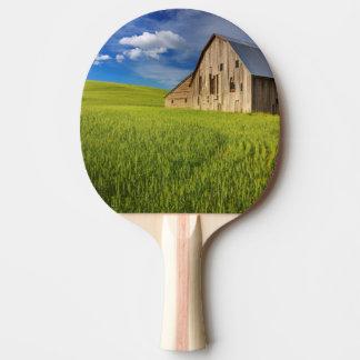 Vieille grange dans le domaine du blé de mars raquette de ping pong