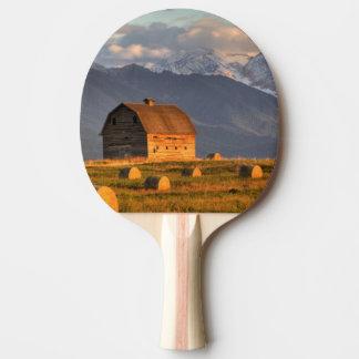 Vieille grange encadrée par des balles de foin et raquette tennis de table