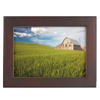 Vieille grange entourée par le gisement 2 de blé boîtes à souvenirs