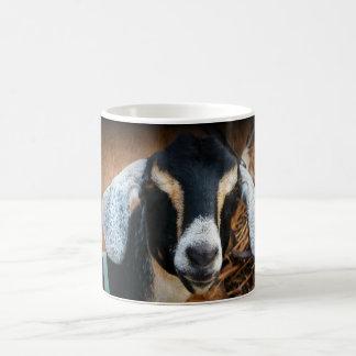 Vieille photo de portrait de Nubian de chèvre Mug