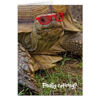 Vieille tortue de retraite dans des lunettes de carte de vœux