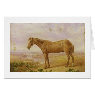 Vieux Billy, un cheval de trait, âgé 62 (huile sur Carte De Vœux