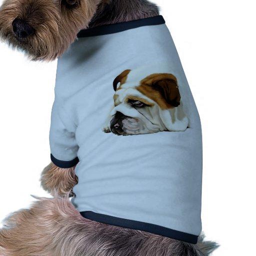 Vieux bouledogue anglais manteaux pour animaux domestiques