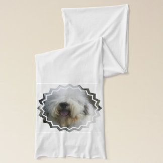 Vieux chien de berger anglais écharpe