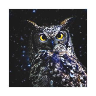 Vieux hibou et étoiles sages toile