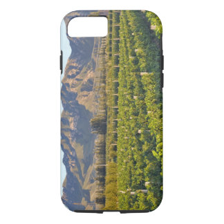 Vignes Cabernet sauvignon dans Huailai Rongchen 2 Coque iPhone 8/7