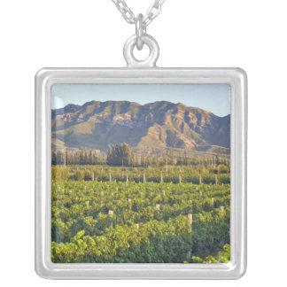 Vignes Cabernet sauvignon dans Huailai Rongchen 2 Pendentif Carré