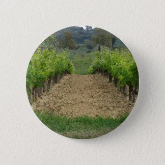 Vignoble au printemps. La Toscane, Italie Badges