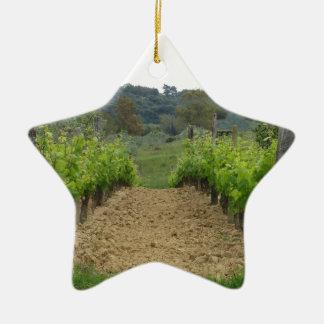 Vignoble au printemps. La Toscane, Italie Ornement Étoile En Céramique