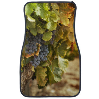 Vignobles au coucher du soleil tapis de sol