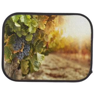 Vignobles au coucher du soleil tapis de voiture