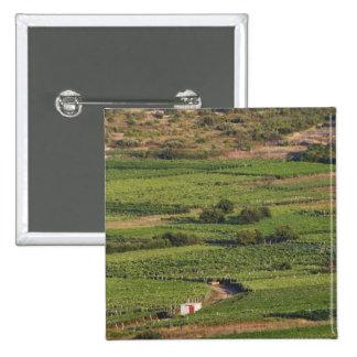 Vignobles de Smokvica sur Korcula du Toreta Badges