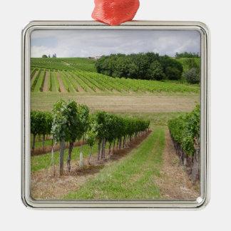 Vineyard - Vignoble (Bordeaux - France) 03 Ornement Carré Argenté