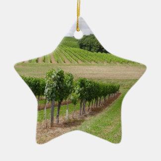 Vineyard - Vignoble (Bordeaux - France) 03 Ornement Étoile En Céramique