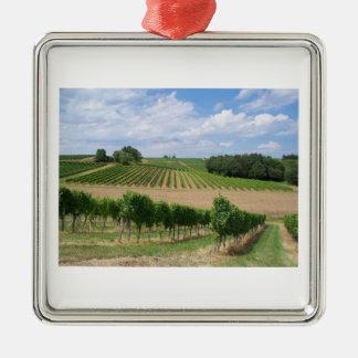 Vineyard - Vignoble (Bordeaux - France) 04 Ornement Carré Argenté