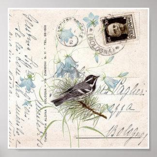 Vintage Bird Flowers Italian Postcard Art Print Poster