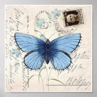 Vintage Blue Butterfly Italian Postcard Art Print Poster