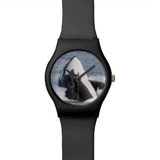 Violation de baleine d'orque montres bracelet