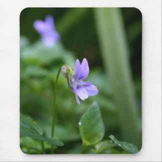 Violette sauvage tapis de souris
