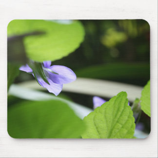 Violette secrète tapis de souris