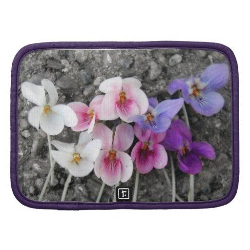 Violettes pourpres organiseur