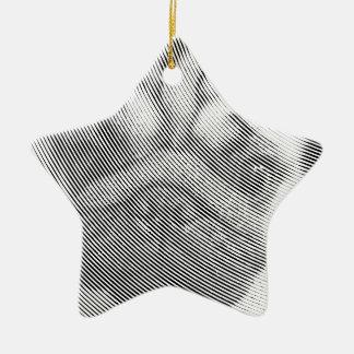 Visage de carlin ornement étoile en céramique