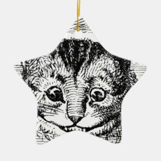 Visage de chat de Cheshire Ornement Étoile En Céramique