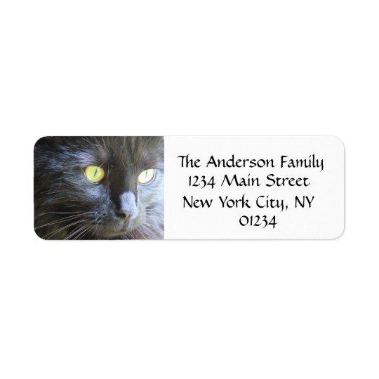 Visage de chat noir, étiquettes de adresse de reto
