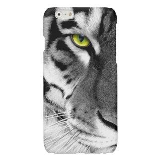 Visage de tigre - tigre blanc - tigre de yeux -