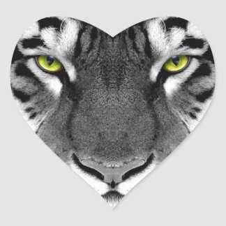 Visage de tigre - tigre blanc - tigre de yeux - sticker cœur