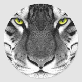 Visage de tigre - tigre blanc - tigre de yeux - sticker rond