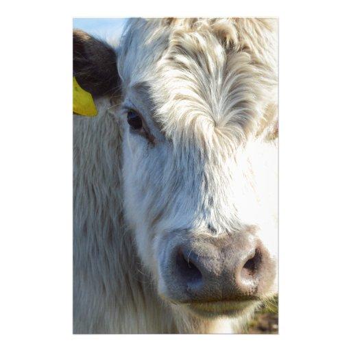 Visage de vache papier à lettre customisable