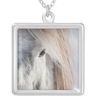 Visage islandais blanc de cheval, Islande Pendentif Carré