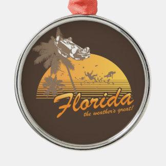 Visitez la Floride, le temps splendide - ouragan Décorations De Noël