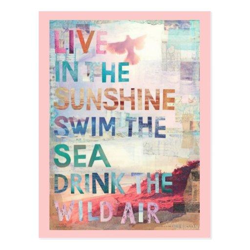 Vivez dans le soleil carte postale