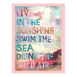 Vivez dans le soleil cartes postales