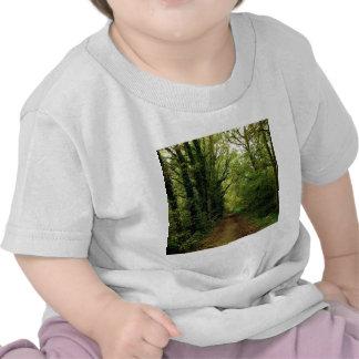 Voie de natures d'arbre t-shirt