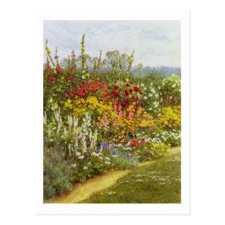 Voie d'herbe et de fleur carte postale