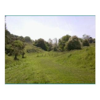 Voie herbeuse de vallée de la carte postale 18 de