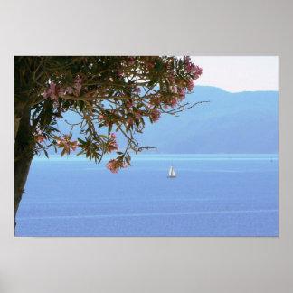 Voilier d'arbre de fleur de rose de mer de la Grèc Posters