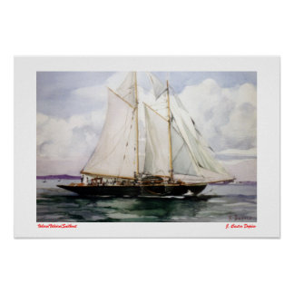 Voilier/Veleiro/Sailboat Poster