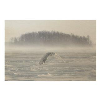 Vol de hibou de Milou en hiver Impression Sur Bois