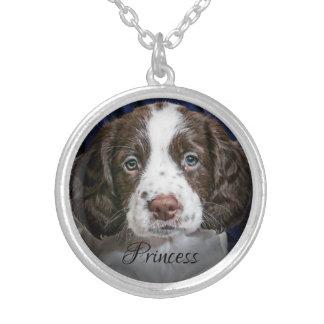 Votre photo de chiens avec le collier plaqué par